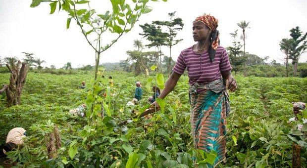 FAO publica la guía sobre capacitación de género y cambio climático