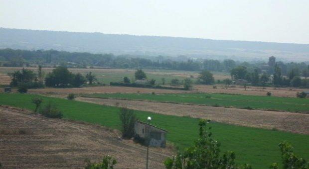 La FAO urge a los Gobiernos a cooperar en materia de agua y desperdicio de alimentos en Oriente Próximo y el Norte de África