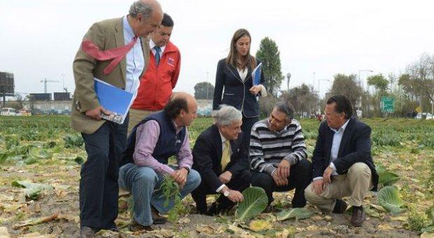 Sebastián Piñera entrega más de 600 bonos productivos a agricultores afectados por la sequía en Coquimbo