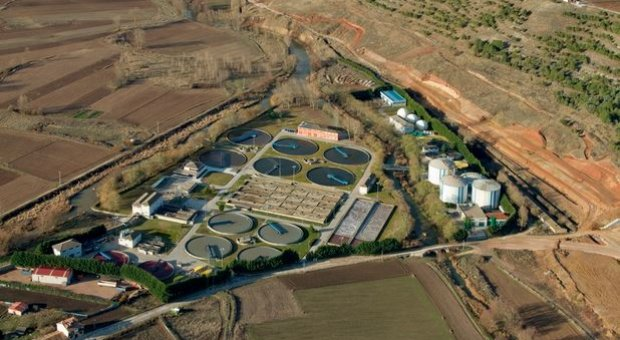 Investigan el efecto de la aplicación de compost de lodo procedente de la EDAR de Burgos en una rotación de secano