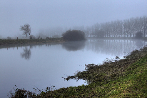Along The River Bann In The Fog