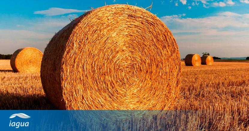 Agricultura_2