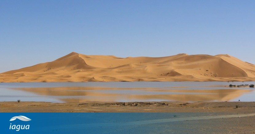 Agua desde la niebla: Un matemático marroquí crea un extraordinario sistema de recolección hídrica