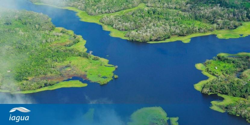 10 Curiosidades Sobre El Amazonas El Río De Los Excesos Iagua
