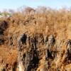 Nueva base datos conservar bosque seco tropical Latinoamérica