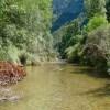 Nuevos indicadores ecológicos determinan efectos antrópicos riberas