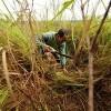 países desarrollo, más amenazados mundo más caliente