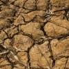 Así es impacto humano sequía Macuelizo y Ciudad Antigua