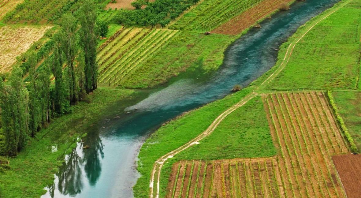 ¿Hacemos uso eficiente agua agricultura?