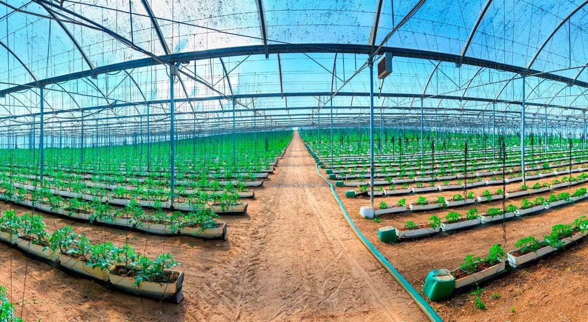 Presentación iAgua Magazine 23: Tecnología y Gestión Agua Agricultura
