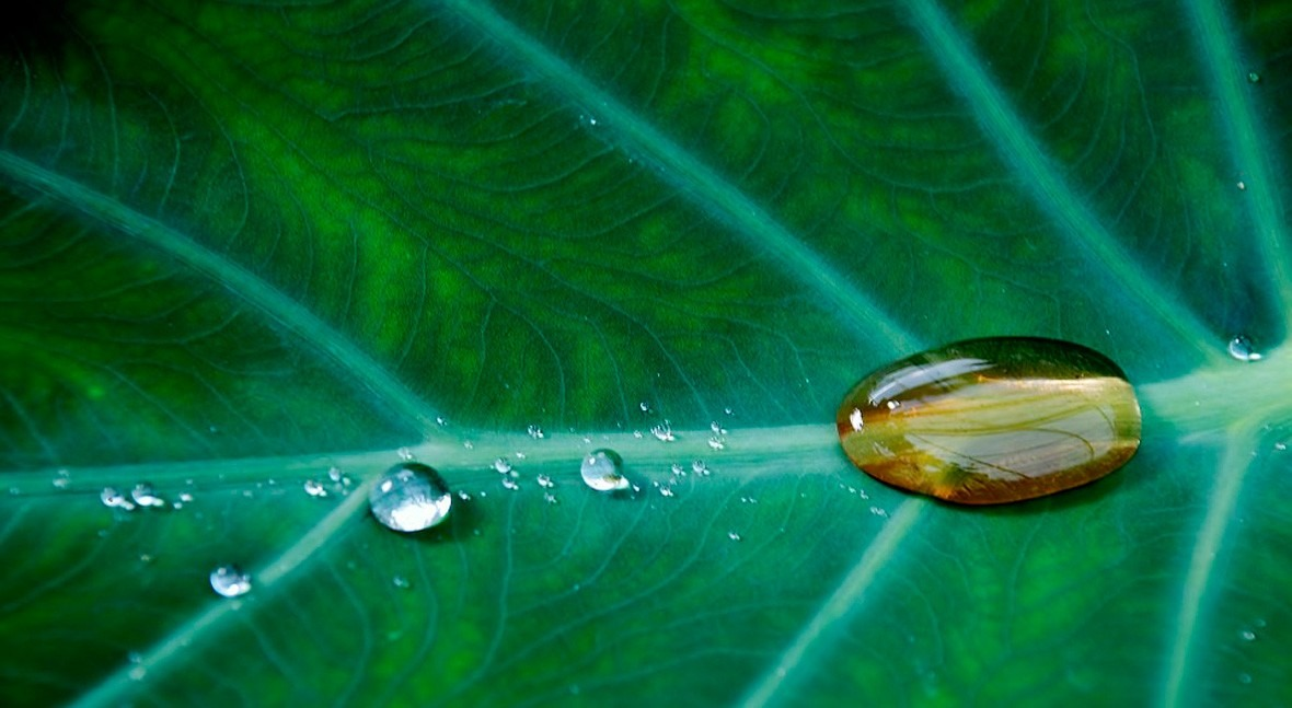 Se entrega premio mejores trabajos fin máster ETSEIB agua y medioambiente