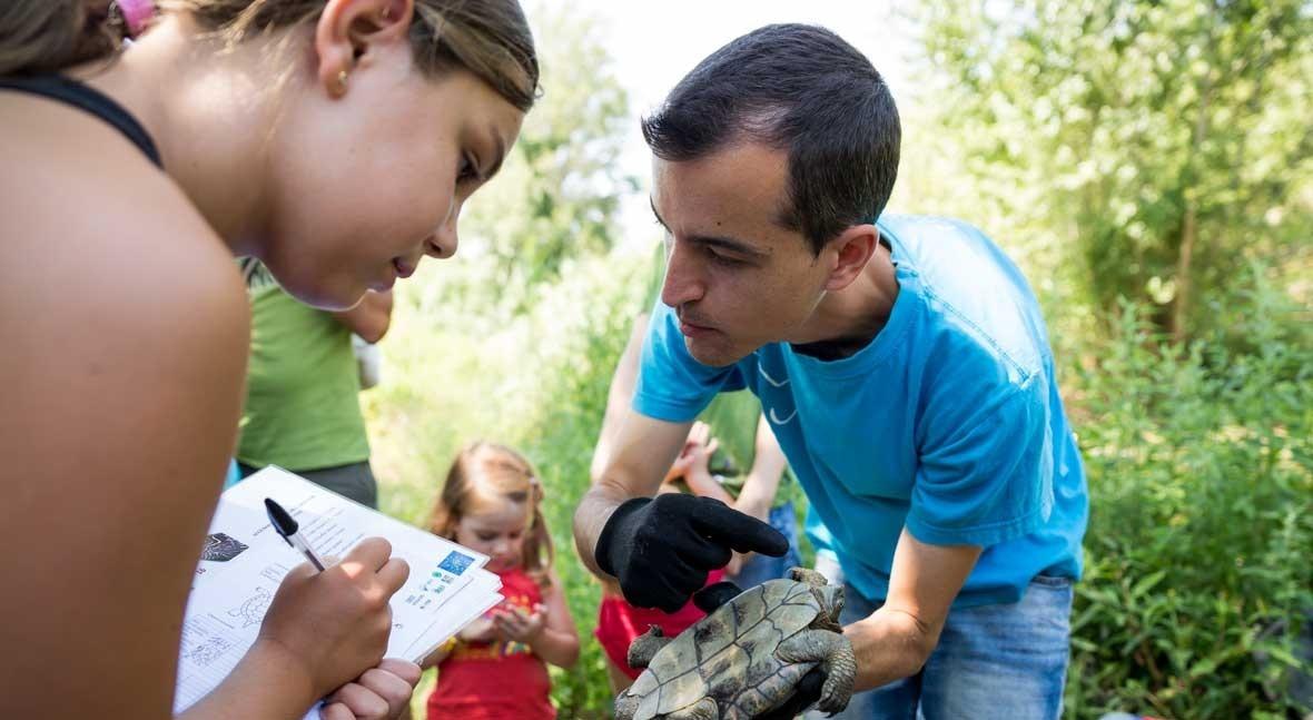 Fundación Aguas Valencia estudia impacto tortugas río Turia