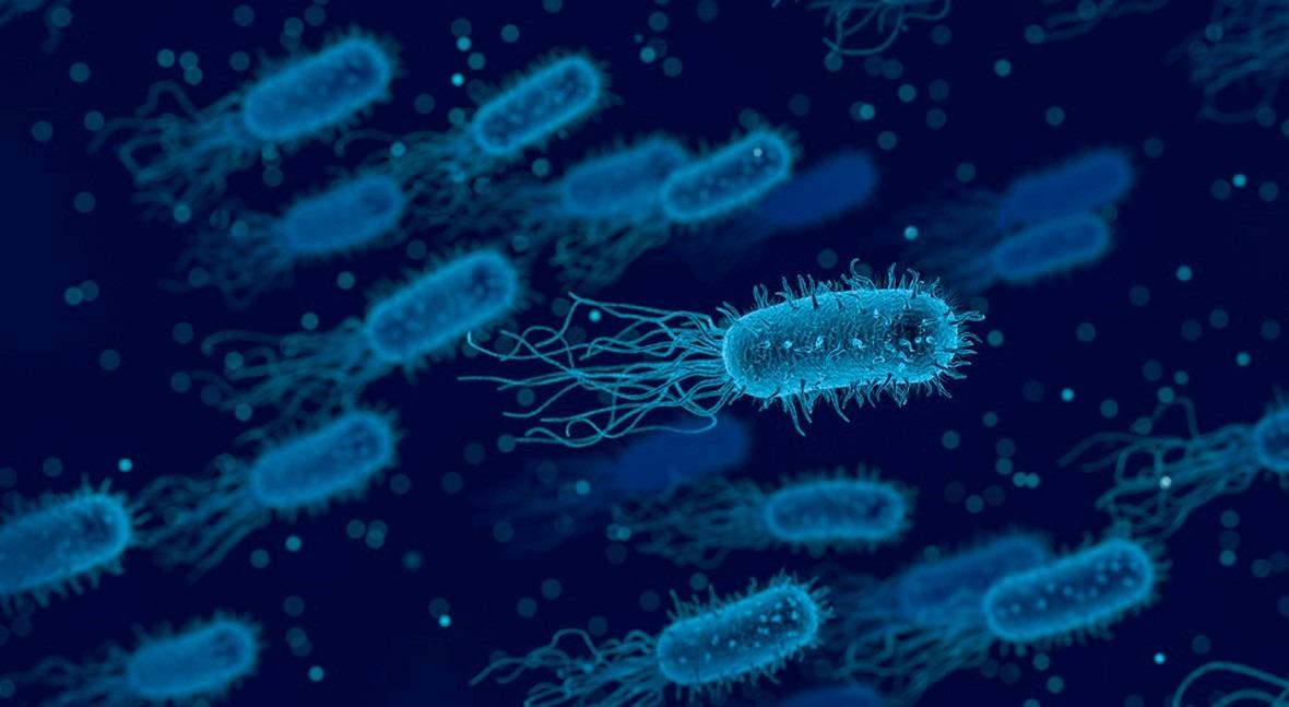HIPO SO4600: Eliminación y prevención H2S causante malos olores