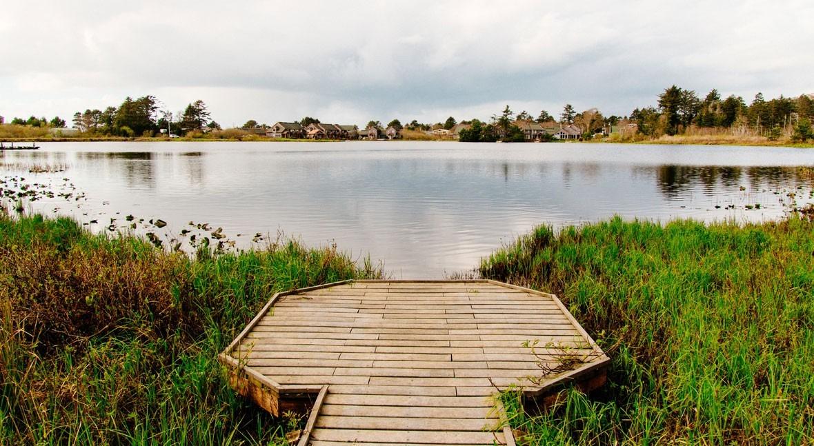 Día Mundial Humedales 2021: humedales y agua