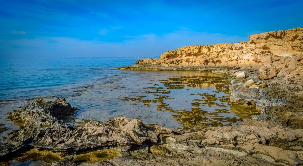 Día Mundial Suelo: detengamos erosión, salvemos nuestro futuro