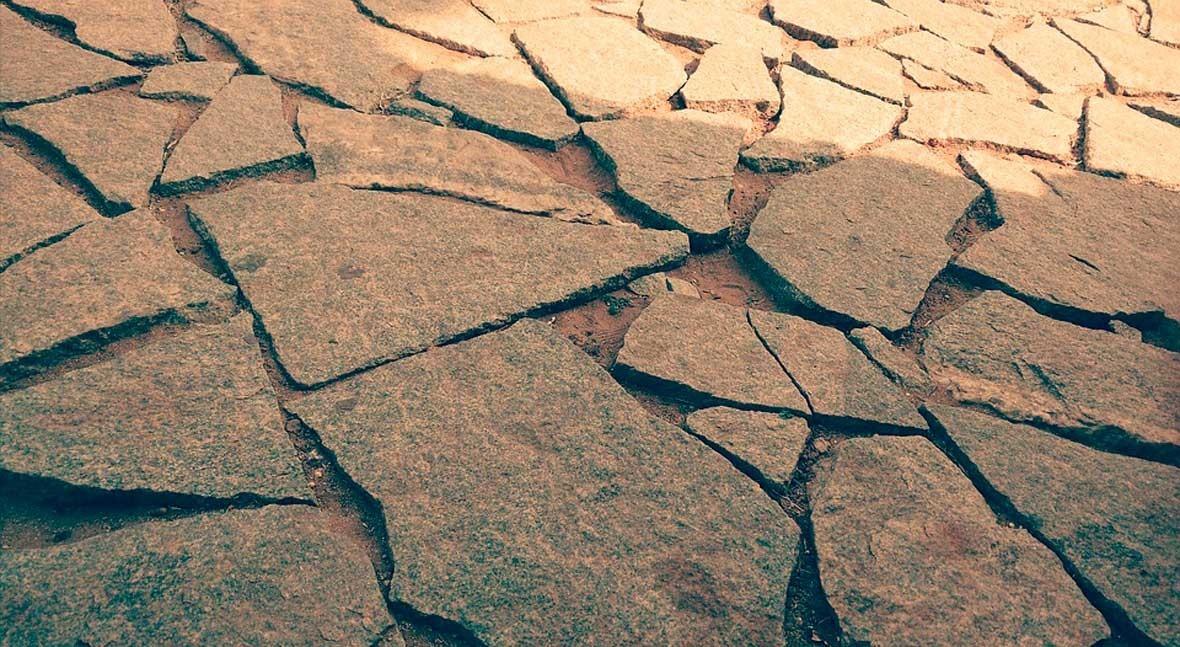 Lo que hay que saber día Mundial Lucha Desertificación y Sequía