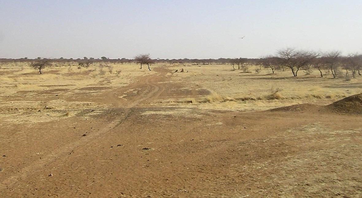 Sahel, desertificación más allá sequía