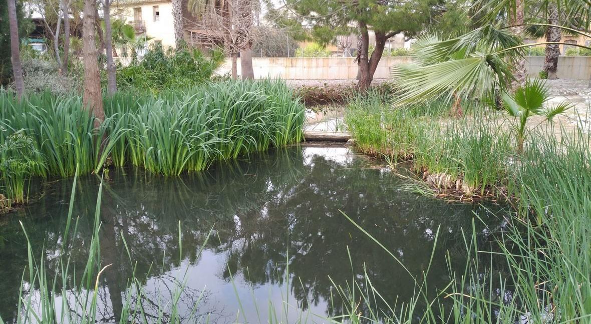 Global Omnium estudia uso humedales artificiales tratamiento aguas residuales