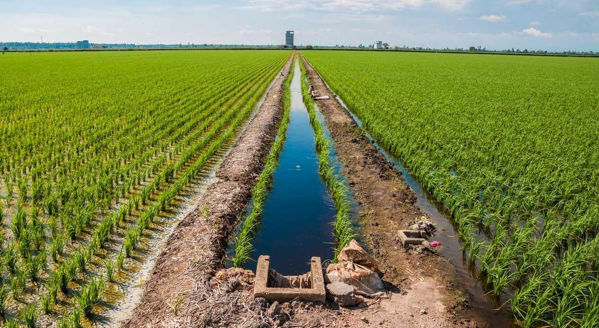 Paraguay prevé invertir más 650 millones dólares agua y saneamiento próximo año
