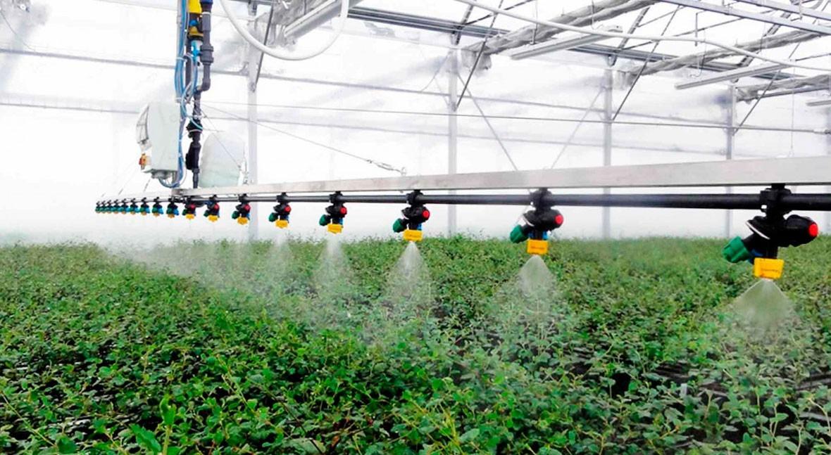 ozono aplicado al agua riego agrícola (Desinfección y +Redox)