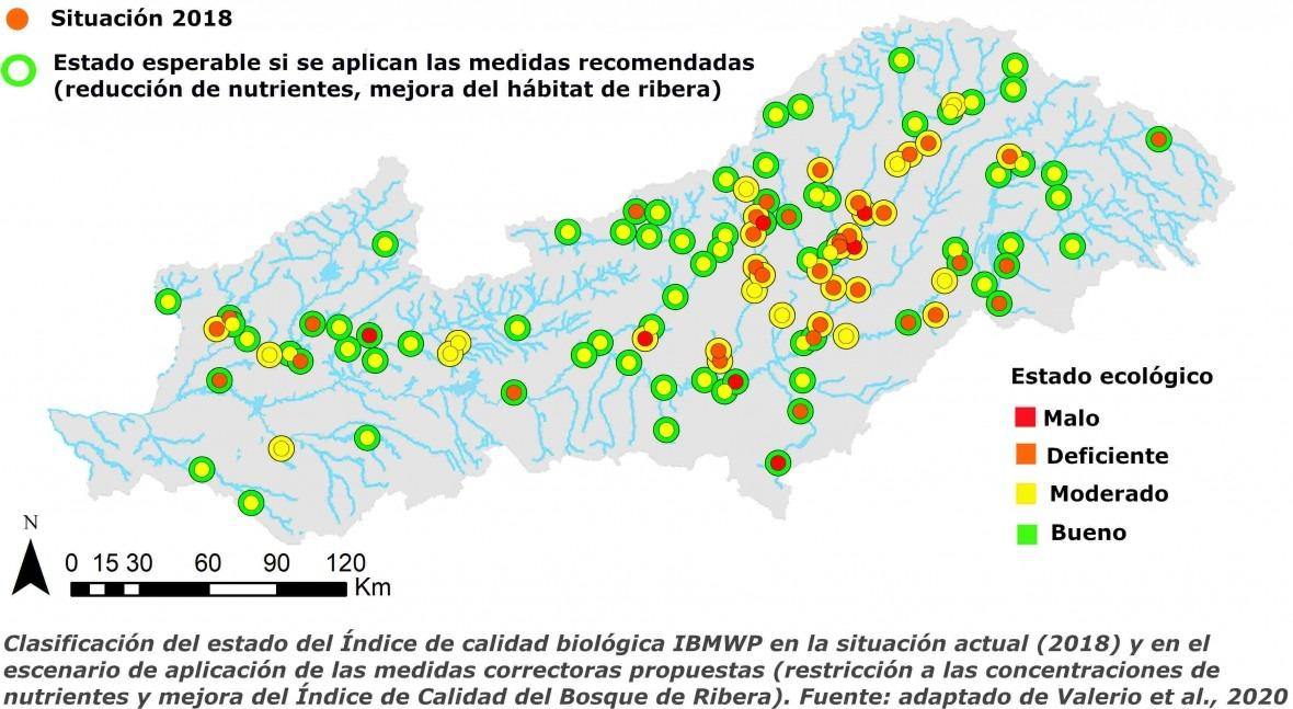 Machine learning predecir respuesta ecosistemas acuáticos medidas mitigación
