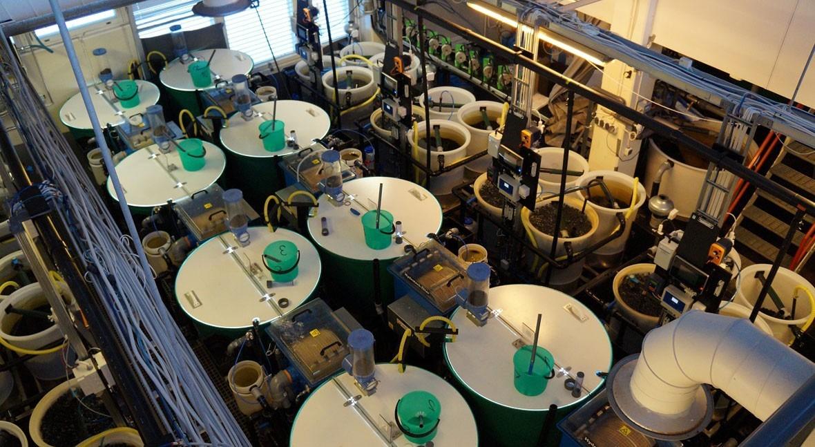 s::can monitoriza calidad agua sistemas recirculación acuicultura Finlandia