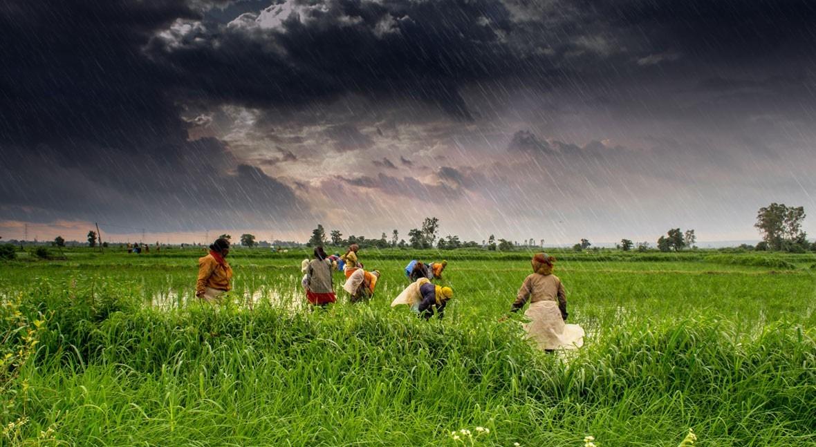 India: cara humana crisis climática
