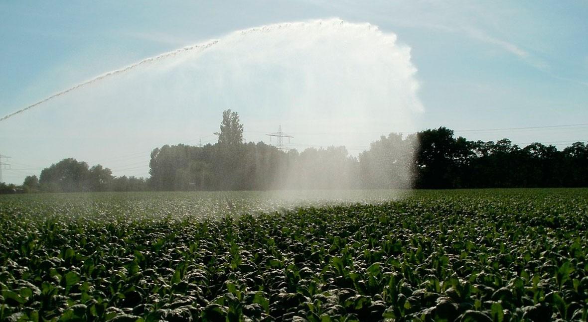 SUEZ Advanced Solutions Spain y Wise Irrisystem, epicentro negocios sector agrícola