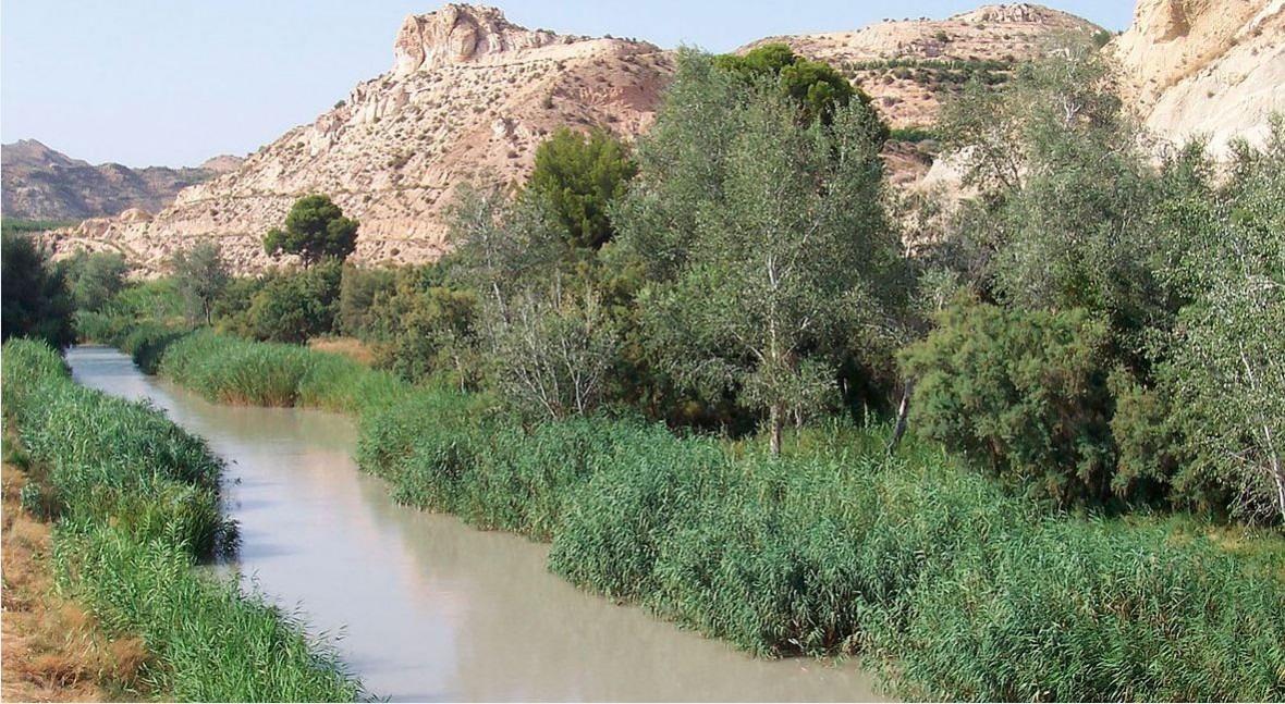 ¿Por qué está cuenca Segura sequía?