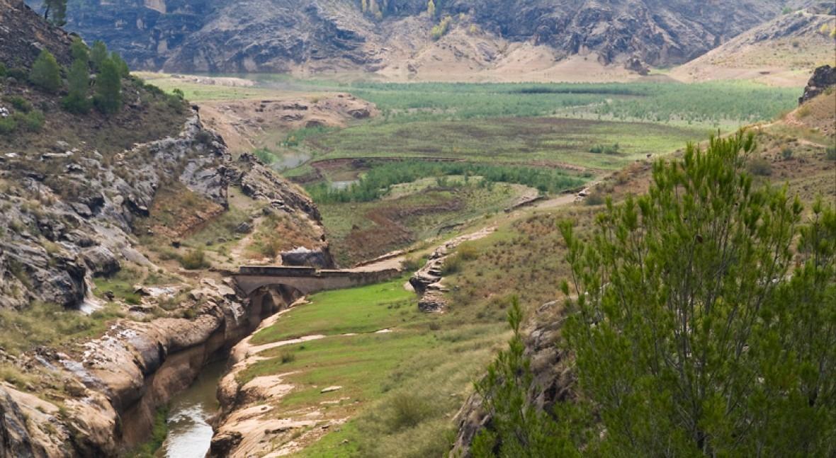 () sequía Demarcación Hidrográfica Segura