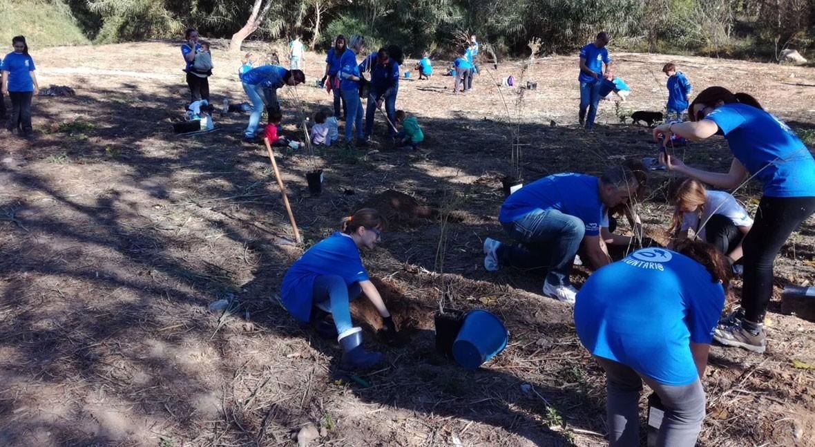 Fundación Aguas Valencia repuebla ribera Turia especies vegetales amenazadas