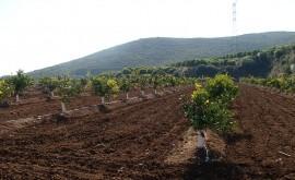 Murcia licita obras reutilización agua EDAR Campos Río