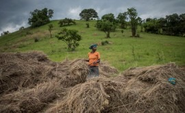 cambio climático podría sumir pobreza más 120 millones personas 2030