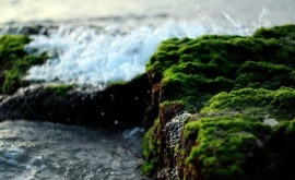 parte superior capa superficial tierra, clave ciclo global agua