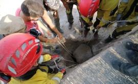 excavaciones Proyecto ASTERO Alcudia descubren segunda entrada cloacas