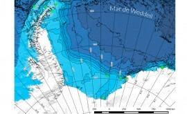 huella contaminación alcanza fondo marino Antártida