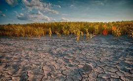 variación natural lluvia oculta señal cambio climático