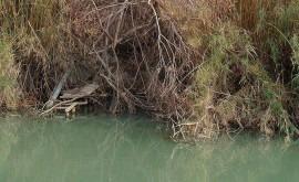 Valencia invita arroceros recircular agua evitar contaminación