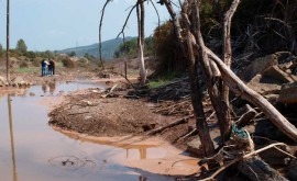 cada tres ríos está afectado exceso sales España