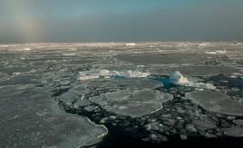 70 % cubierta hielo Ártico se forma y se derrite solo año