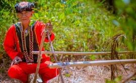 comunidades indígenas, esenciales combatir cambio climático
