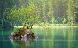 combinación nutrientes y calentamiento aumentan emisiones metano lagos