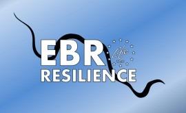 Participación social Ebro Resilience, propuesta LIFE reducir riesgo inundación