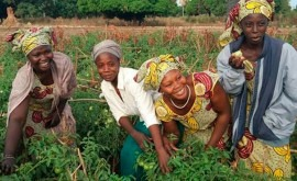proyecto promueve uso sostenible agua regadío agricultores Senegal