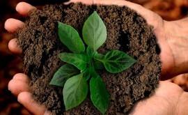 Mejorar agricultura mediante transferencia y aplicación tecnología innovadora