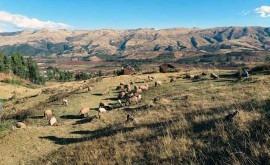 tareas reconstrucción zonas afectadas Perú comenzarán cuando terminen lluvias