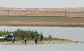 estudio ADN ayuda diversificación pesca agua dulce