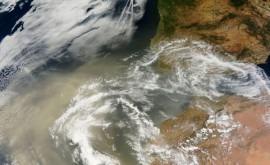 intrusión polvo sahariano península afecta al declive microalgas