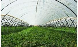 Murcia reforzará inversión agua garantizar recursos regantes y agricultores