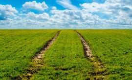 aportación agricultura regadío sostenibilidad medio rural